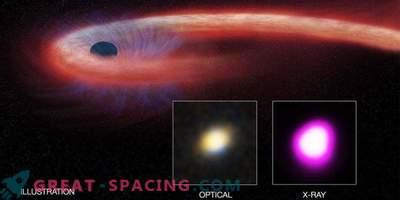 Supermassive must auk rütmib õnnetu tähe