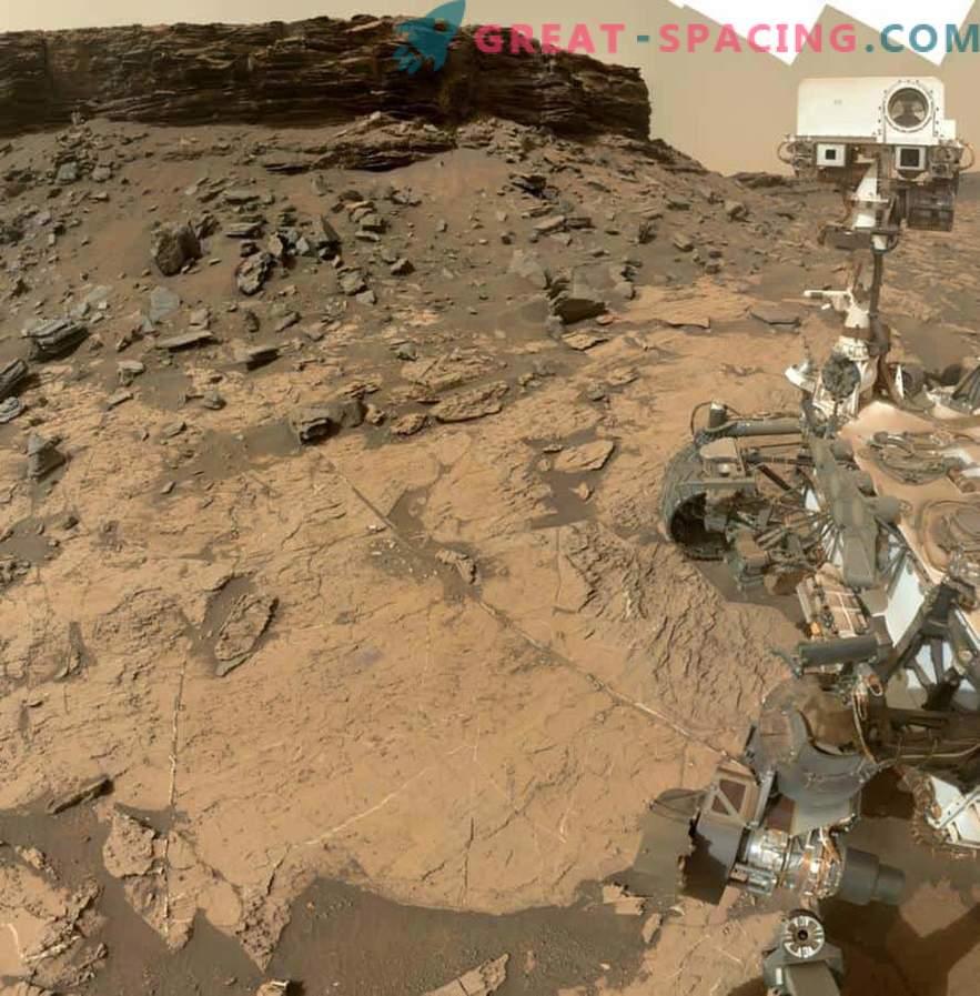 Leiti Marsi metsa vihjeid elus
