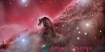 Mis juhtub Horsehead Nebulas?