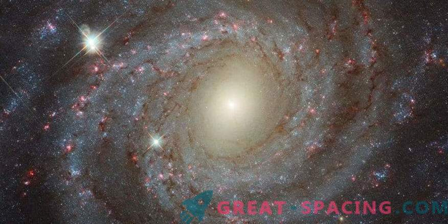 Lonely beauty NGC 3344