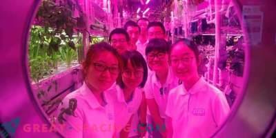 """Hiina vabatahtlikud veetsid 200 päeva virtuaalses """"Lunari baasis"""""""