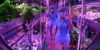Hiina vabatahtlikud lahkuvad virtuaalsest lunarahast
