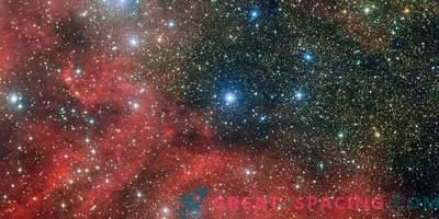 Kes varastas noored tähed?