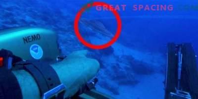 Alienska ladja je padla v past Bermudskega trikotnika?